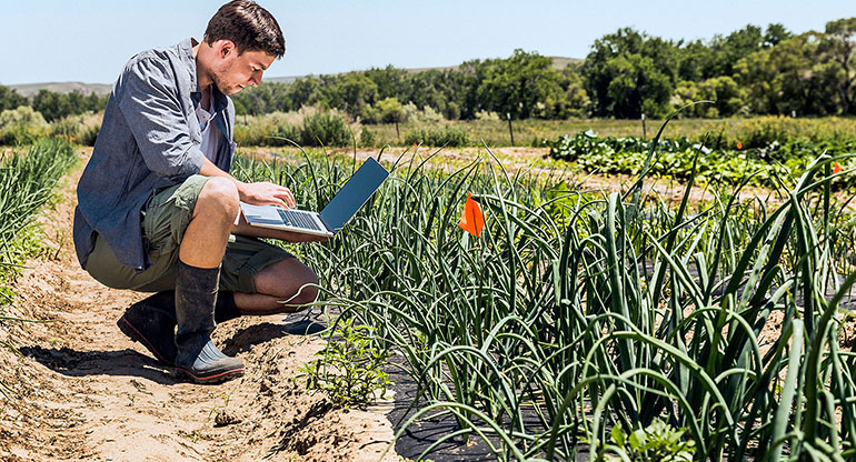 Side view of man crouching in vegetable garden using laptop computer